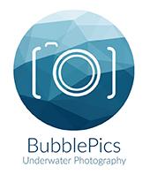bubble pics logo